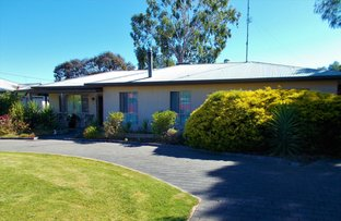 Picture of 47 Salom Street, Bordertown SA 5268