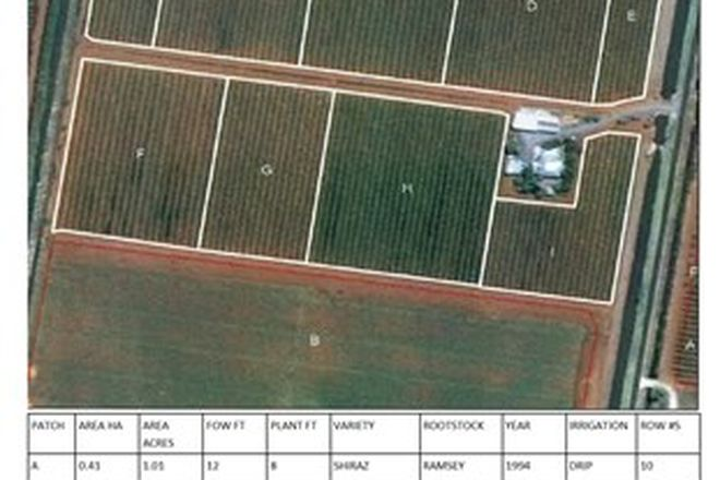 Picture of Farm 205 Moseley Road, BILBUL NSW 2680