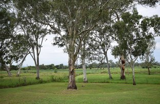 Picture of 9 Bradley Close, Laidley Heights QLD 4341