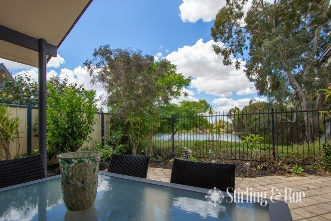 Picture of 3/43 Martingale Ave, HENLEY BROOK WA 6055