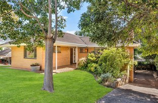 Picture of 3 Toolaby Avenue, Beaumont SA 5066