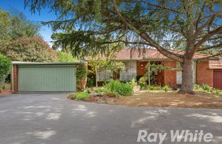 Picture of 14/231-239 Canterbury Road, Blackburn VIC 3130
