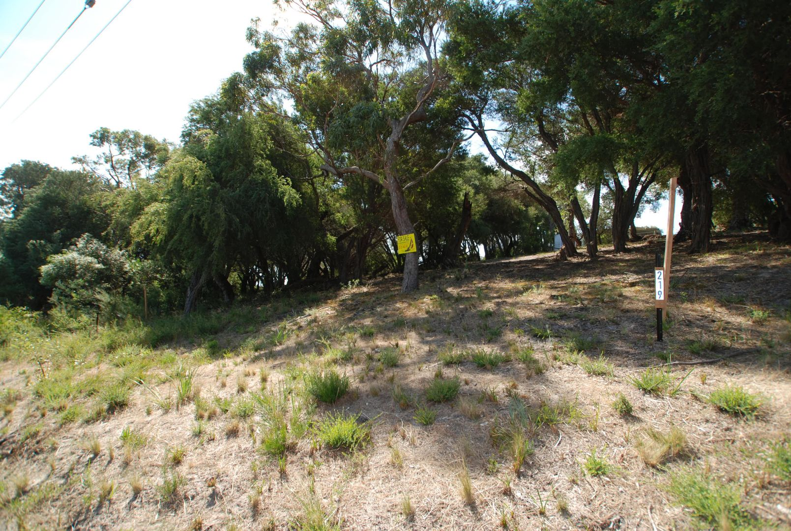 219 National Park Road, Loch Sport VIC 3851, Image 1