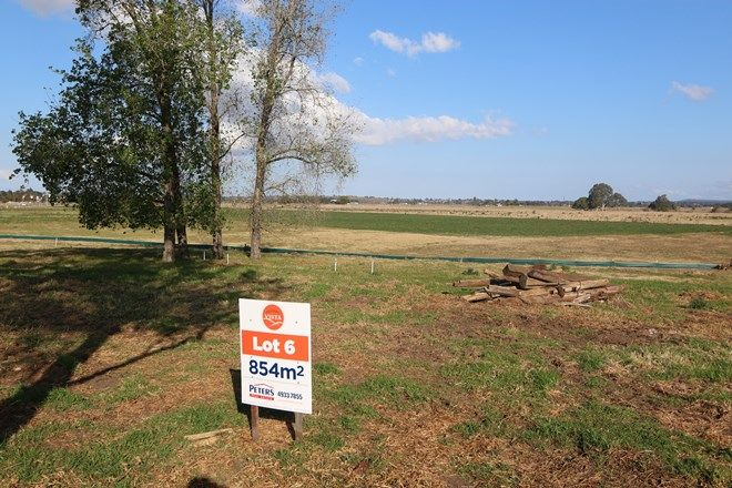 Picture of Lot 6 Bolwarra Vista, BOLWARRA NSW 2320