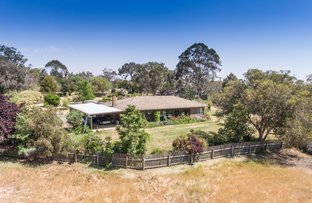 Picture of 249 Noonans Road, Young NSW 2594