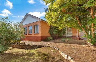 Picture of 44 Midway Road, Elizabeth East SA 5112