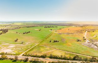 Picture of ' Inglis Estate', Broomehill West WA 6318