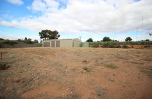 Picture of 8 Wilton Court, Waikerie SA 5330