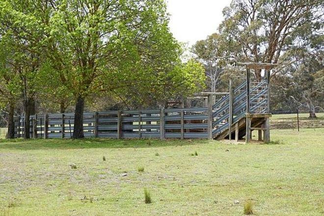 Picture of 868 Covan Creek Road, LAKE BATHURST NSW 2580