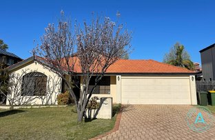 Picture of 33 Cheval Place, Canning Vale WA 6155