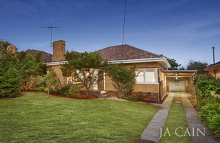 Picture of 8 Dion Street, Glen Iris VIC 3146