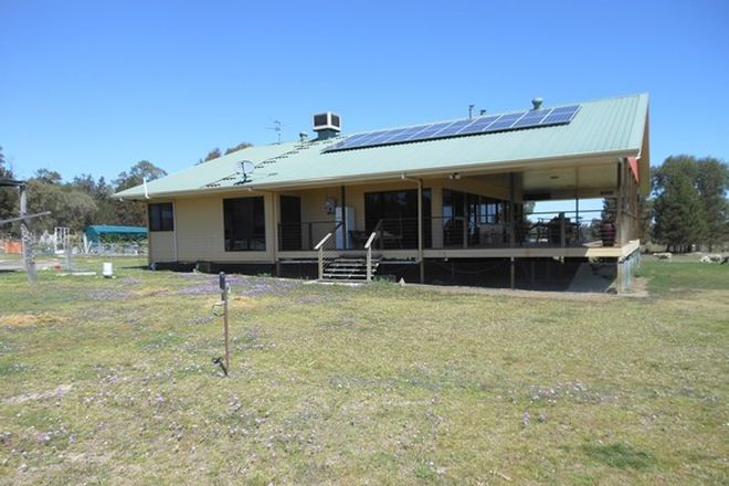 Picture of 481 Greenup Limevale Rd, COOLMUNDA QLD 4387