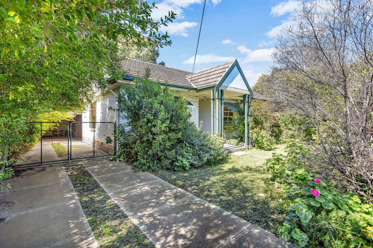 20 Blackler Avenue, Plympton Park SA 5038, Image 0