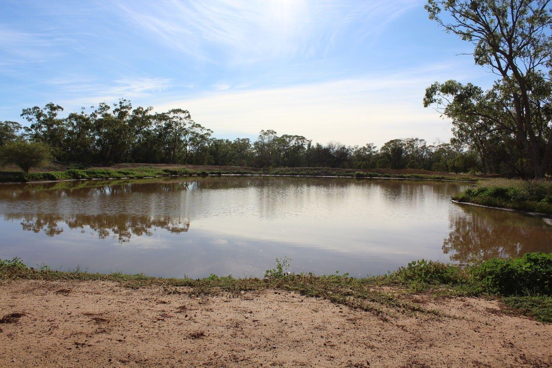 """""""Glenwood South"""", Mungindi NSW 2406, Image 1"""
