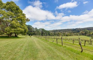 Picture of 224 Main Creek Road, Main Ridge VIC 3928
