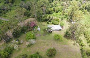 Picture of 263 Oakey Creek Road aka 281 Oakey Creek Road, Georgica NSW 2480