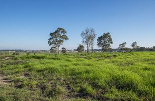 Picture of Lot 1219 Mayo Crescent, Chisholm NSW 2322