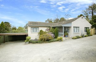 Picture of 680 Canterbury Road, Vermont VIC 3133