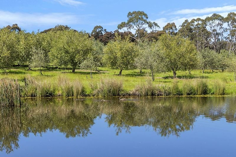 2499 West Tamar Highway, Exeter TAS 7275, Image 1