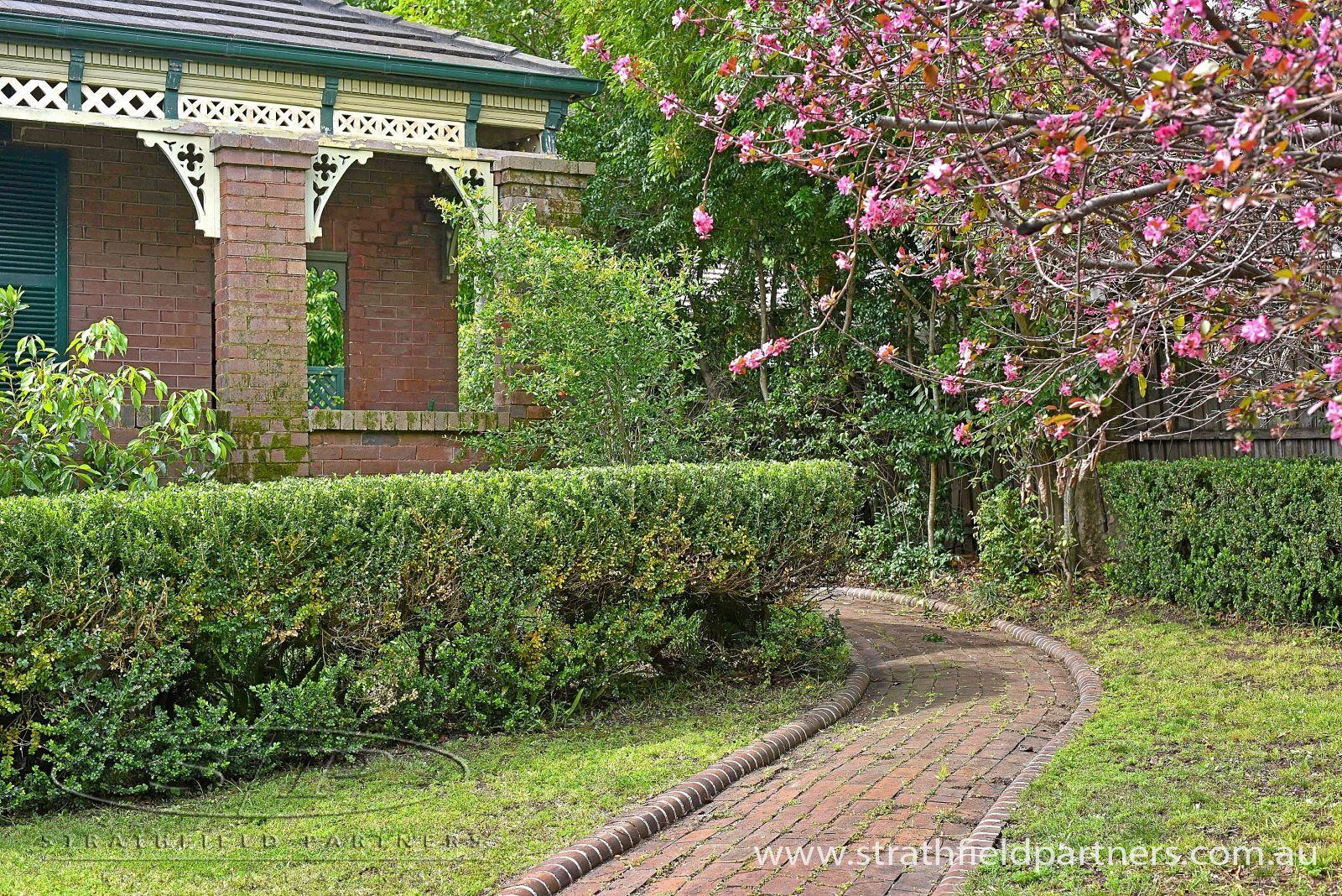 15 Gladstone Street, Burwood NSW 2134, Image 2