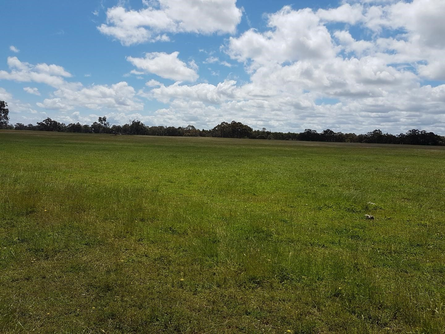 Lot 3783 Jamieson Road, Capel WA 6271, Image 2