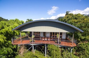 Picture of 3 Grandview Crescent, Earlville QLD 4870