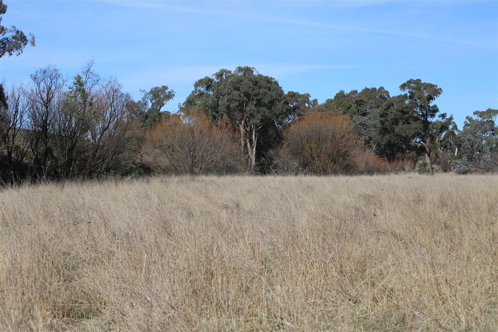 lot 163 Flacknell Creek Road, Gunning NSW 2581, Image 0