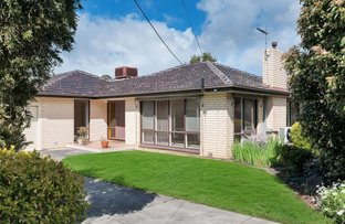 14 Black Road, Flagstaff Hill SA 5159