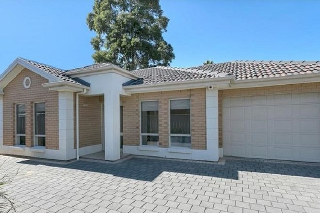 Picture of 3/16 Mortimer Street, KURRALTA PARK SA 5037