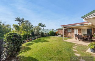Picture of 6 CAITLIN PLACE, Bli Bli QLD 4560