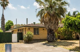 Picture of 14 Scole Place, Huntingdale WA 6110