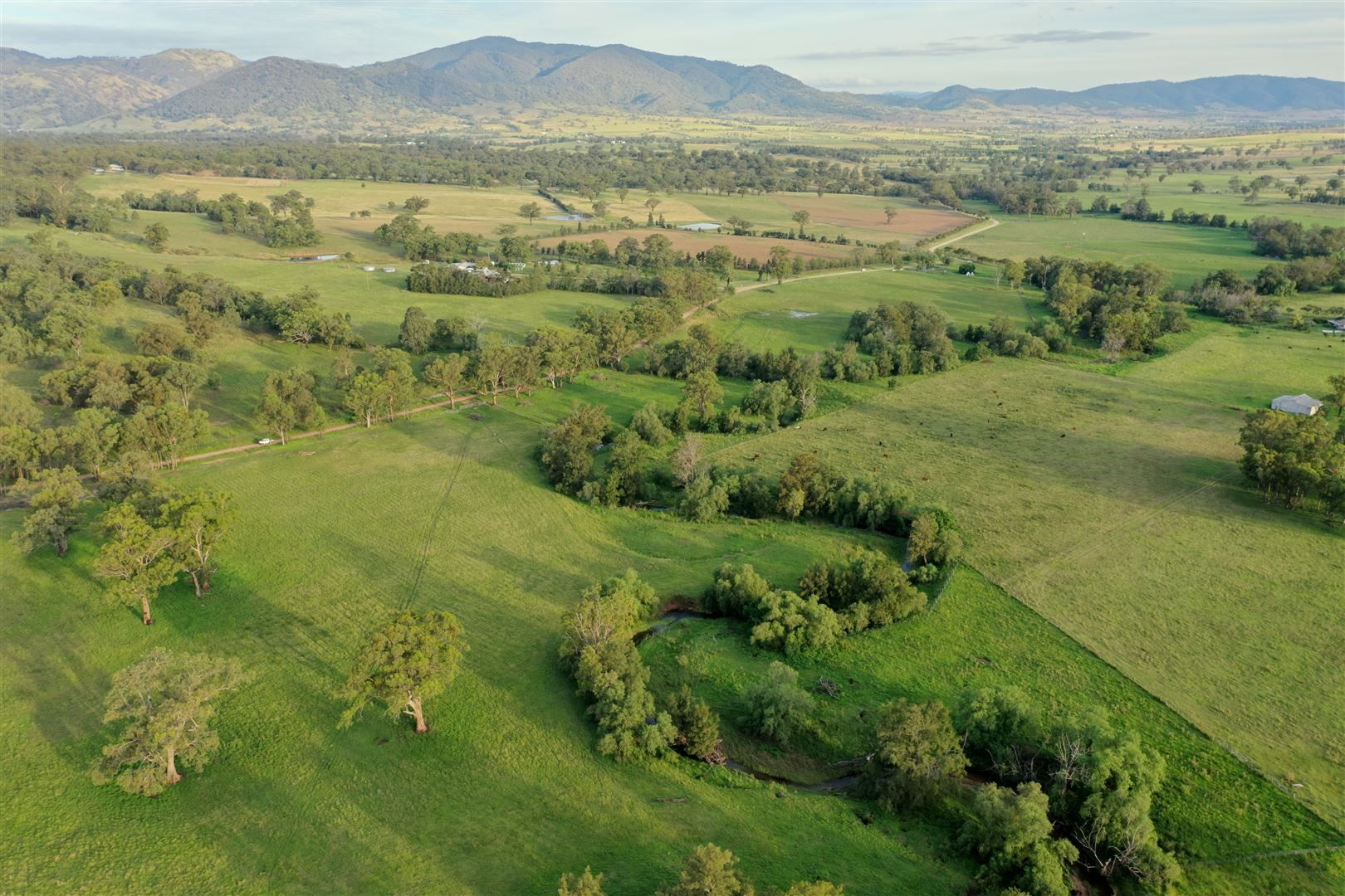 'The Plantation' 198 Dry Creek Rd, Scone NSW 2337, Image 0