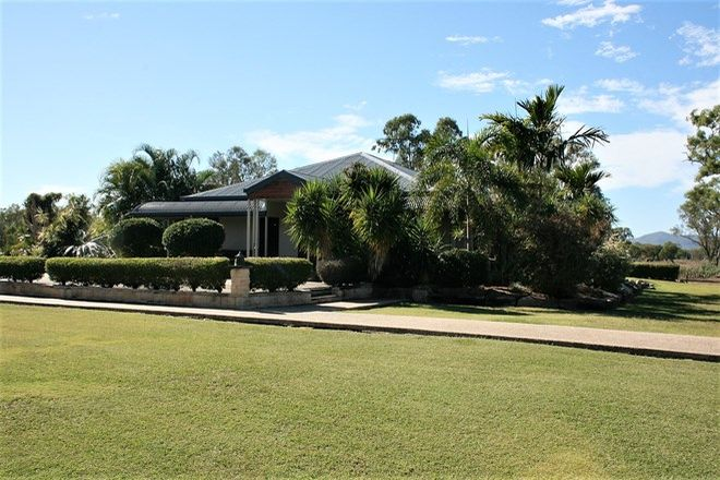 Picture of 180 Pink Lily Road, PINK LILY QLD 4702
