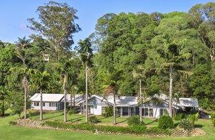 Picture of 20 Nunderi Lane, Murwillumbah NSW 2484