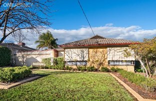 Picture of 3 ALLDIS PLACE, Kooringal NSW 2650