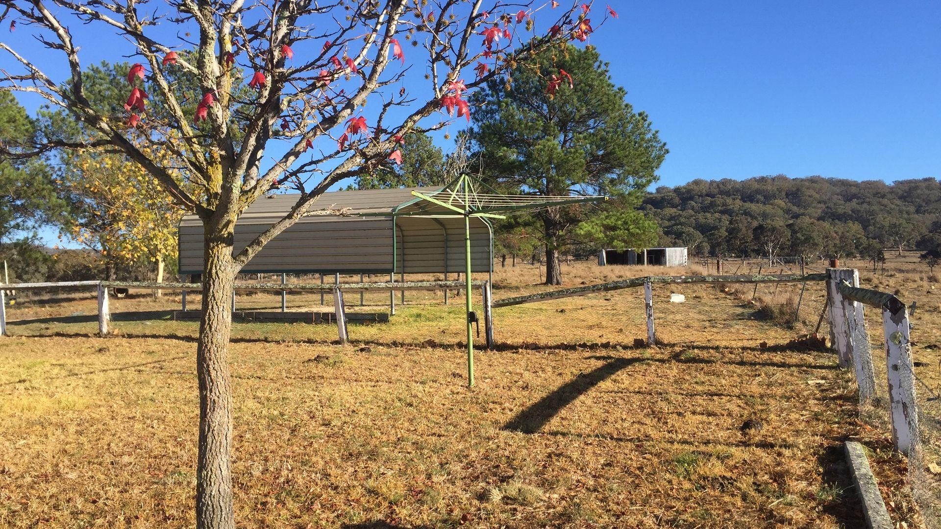 "5 ""Banalasta Homestead"", Bendemeer NSW 2355, Image 1"