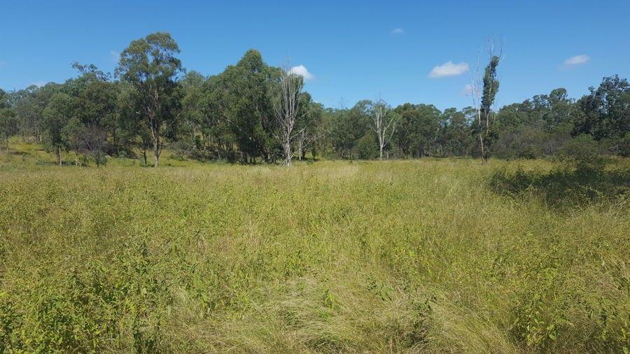 Lot 3 Cooyar Mount Binga Road, Cooyar QLD 4402, Image 2