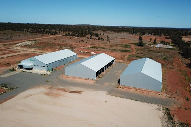 Picture of 2 Yarmwal Road, MURRAMI NSW 2705