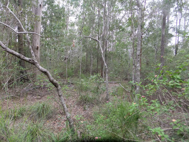 28 Gilliland Court, Blackbutt QLD 4314, Image 0