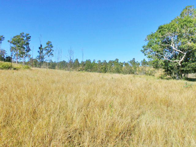 535 MUDLO ROAD, Kilkivan QLD 4600, Image 0