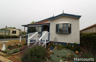 Picture of 119/445 Pinjarra Road, Coodanup WA 6210