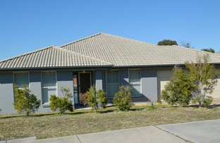 Picture of 82 Wattle Ponds Road, Singleton NSW 2330