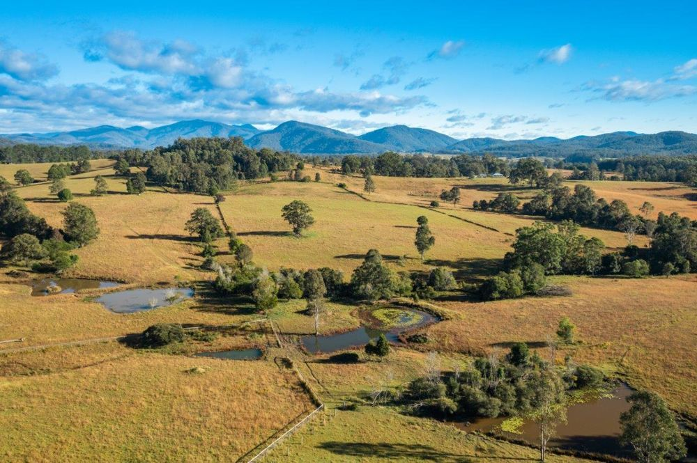 231 Upper Rollands Plns Rd, Rollands Plains NSW 2441, Image 2