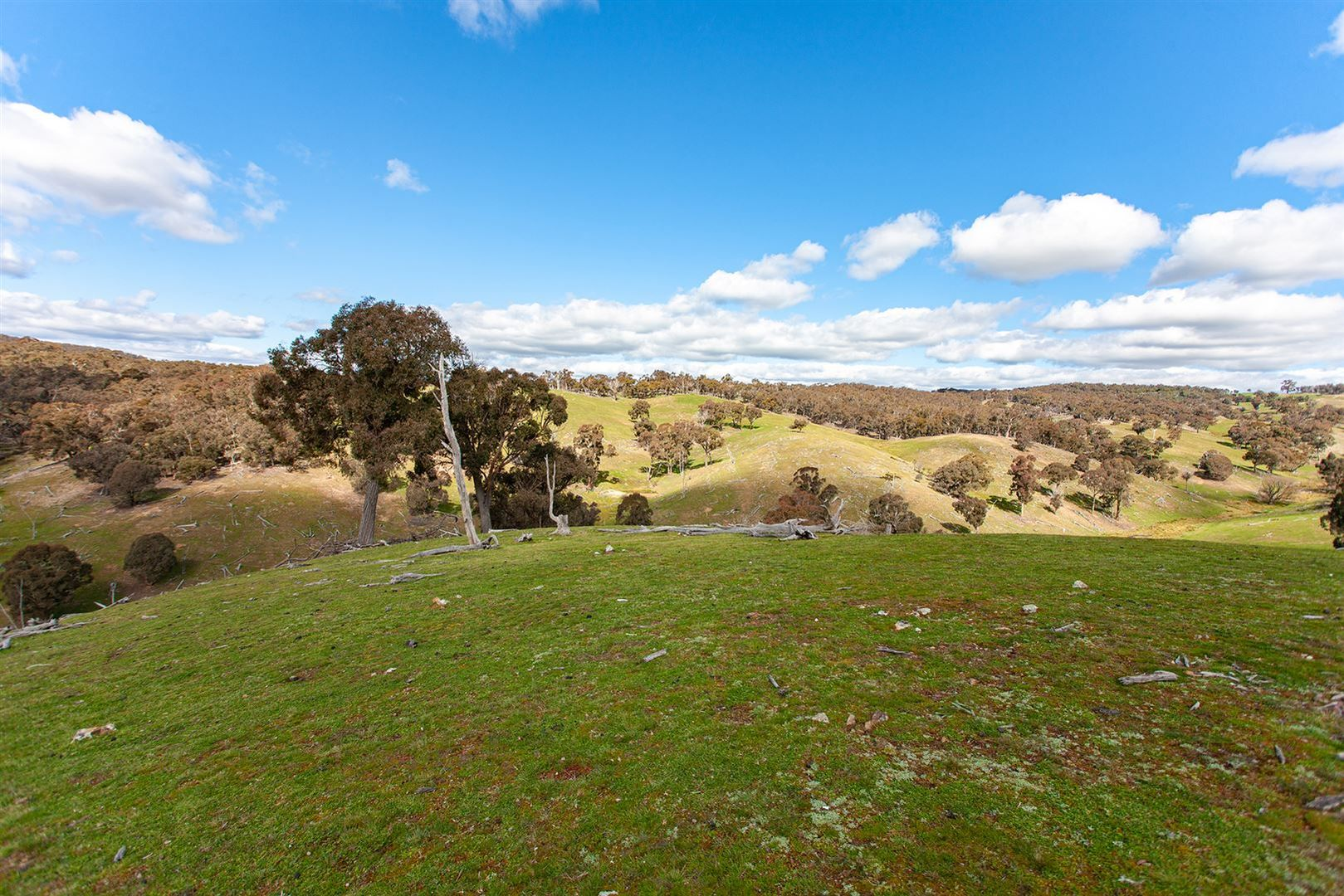 Taralga NSW 2580, Image 0