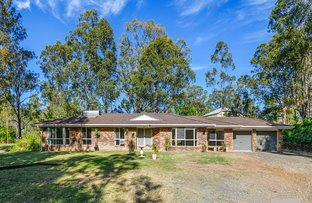 Picture of 14 Sirius Court, Cedar Vale QLD 4285