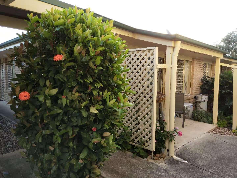 12 Winani street, Slacks Creek QLD 4127, Image 0