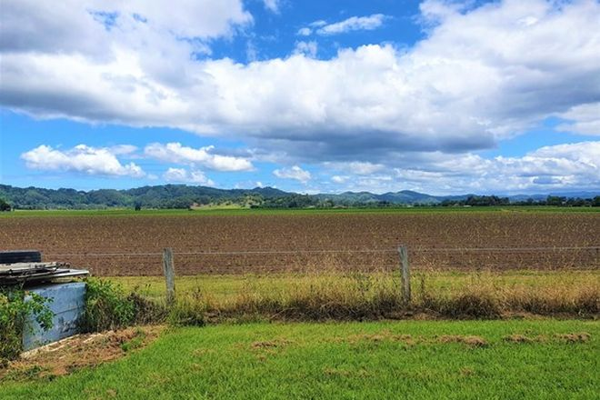 Picture of 8368 Tweed Valley Way, CONDONG NSW 2484