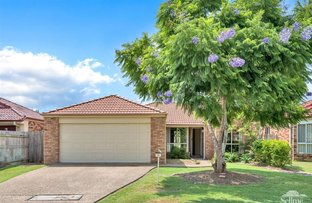 Picture of 50 Fawn Street, Upper Coomera QLD 4209