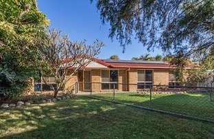 Picture of 4 Macadamia ct, Walloon QLD 4306