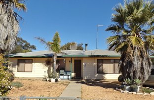 Picture of 38  Butterfly Ave, Lightning Ridge NSW 2834